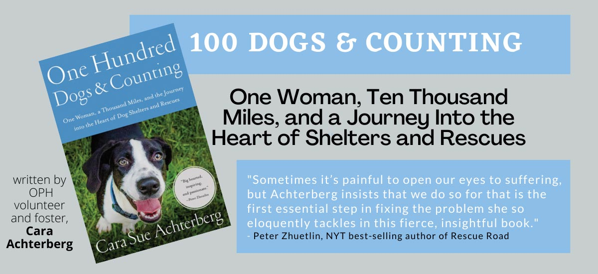 100 Dogs and Counting by Cara Sue Achterberg
