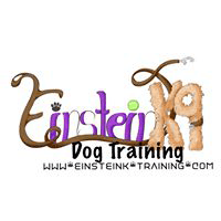 Einsteink9 Dog Training